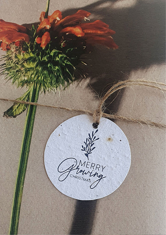 Growing Paper • Christmas Tags