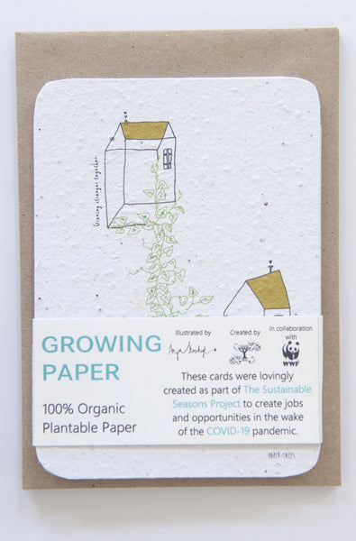Set of 5 Growing Paper Greeting Cards