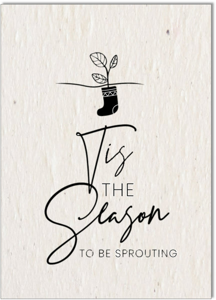 Christmas Card • Tis the season to be Sprouting