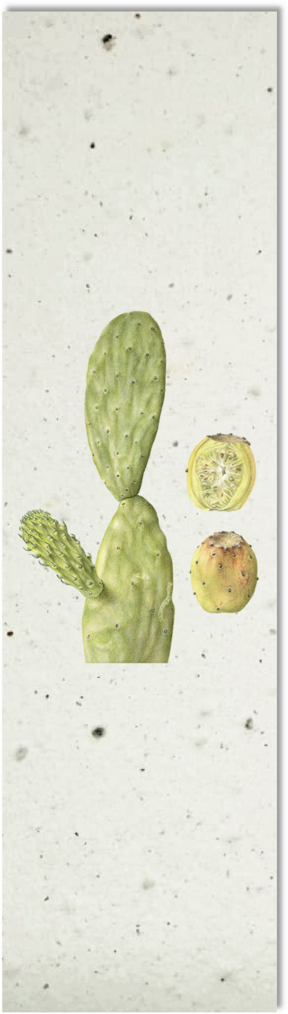 Bookmark | Prickly Pear