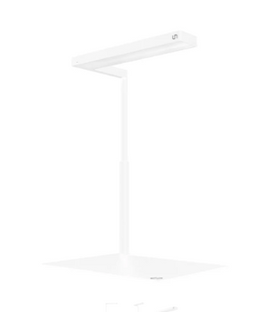UNS x ONF Flat Nano Stand LED Light Limited Edition