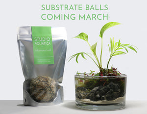 Wabi Kusa Substrate Ball