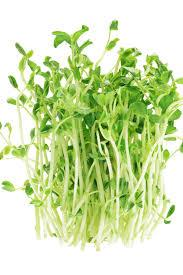 Pea Shoots, Sunflower & Radish mix - 50g