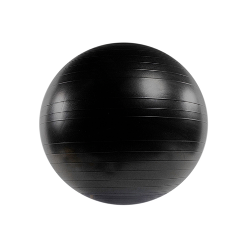 Power Systems Versa Stability Ball 55cm