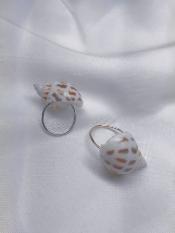 Shell ring #001