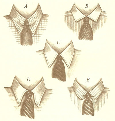 COLLAR YOUR STYLE