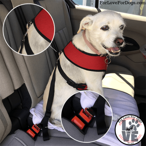 seatbelt for dogs forlovefordogs for love for dog pets pet