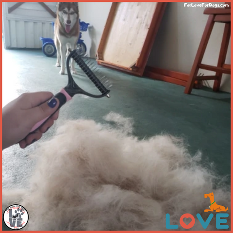 FLFD - Grooming Shedding Brush Comb forlovefordogs for love for dogs jewelry