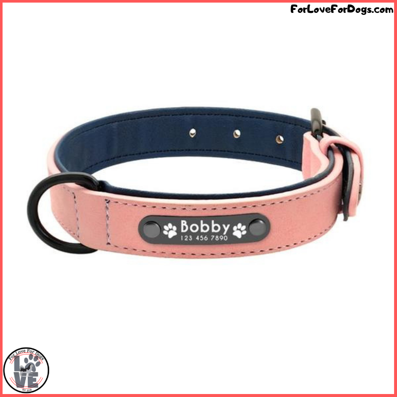 FLFD - Custom Engraved Premium Leather I.D. Dog Collar