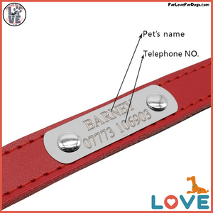 FLFD - Custom Premium Leather Collar For Small Pets