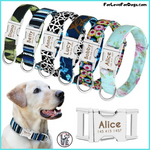 FLFD - Personalized Nylon Dog Collar