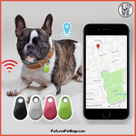 FLFD - GPS PET TRACKER