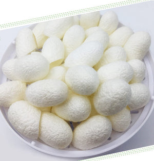 10pcs/pack Organic Natural silkworm cocoon Ball - My Lifestyle Stores