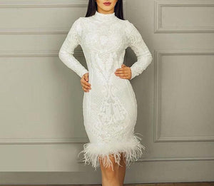Turtleneck Feathers Sequined Dress - My Lifestyle Stores