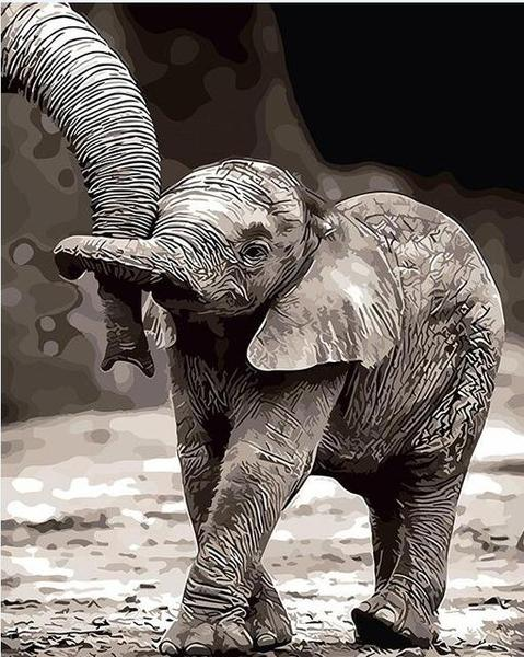 Baby Elephant Paint by Numbers