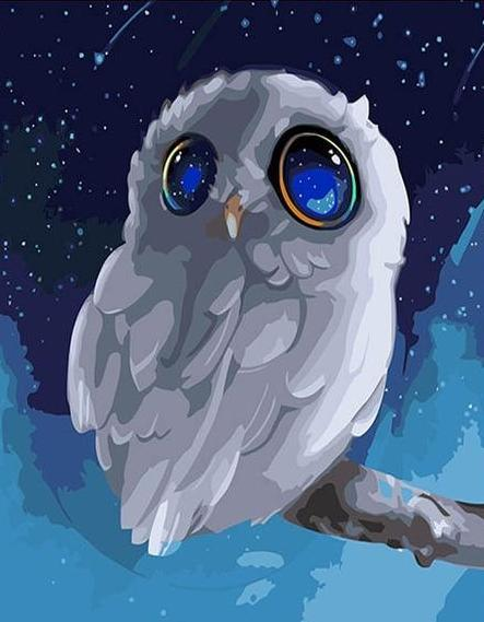 Cartoon Owl Paint by Numbers