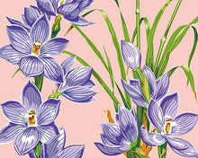 Load image into Gallery viewer, Crocus Flowers Paint by Numbers