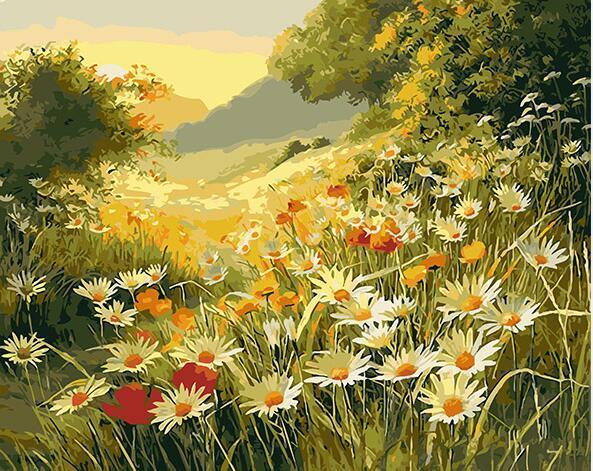 Daisy Field Paint by Numbers