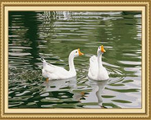 Load image into Gallery viewer, Ducks Pair Paint by Numbers