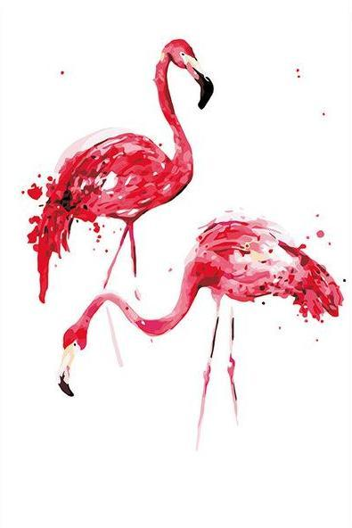 Flamingos Pair Paint by Numbers