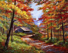 Load image into Gallery viewer, Forest Pathway Paint by Numbers