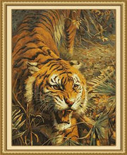 Load image into Gallery viewer, Furious Tiger Paint by Numbers