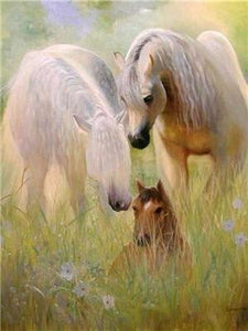 Horse Family Paint by Diamonds