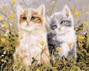 Kittens Pair Paint by Numbers