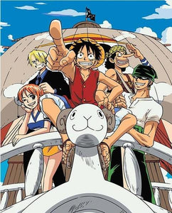 One Piece Anime Paint by Numbers
