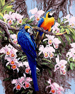 Parrots & Flowers Paint by Numbers