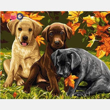 Load image into Gallery viewer, Puppies Paint by Numbers