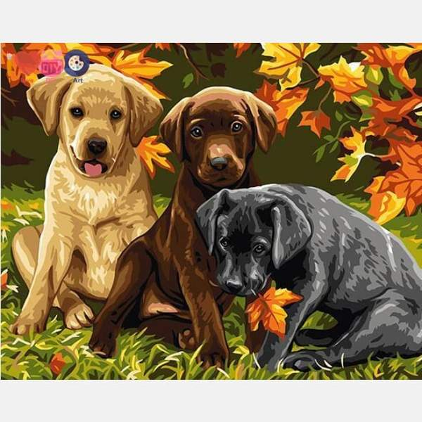 Puppies Paint by Numbers
