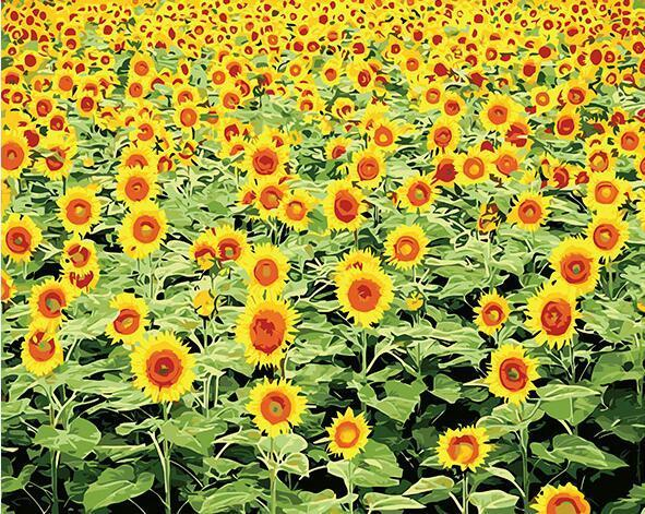 Radiant Sunflower Field Paint by Numbers