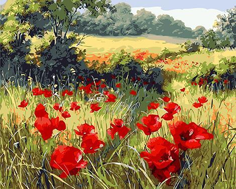 Red Poppies Crop Paint by Numbers