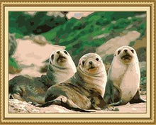 Load image into Gallery viewer, Seal Fish Paint by Numbers