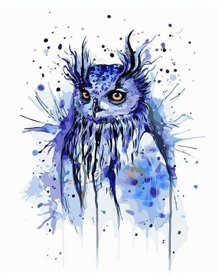 Splashy Owl Paint by Numbers