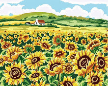 Load image into Gallery viewer, Sunflowers Field Paint by Numbers