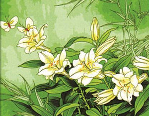 Tricyrtis Plant Paint by Numbers