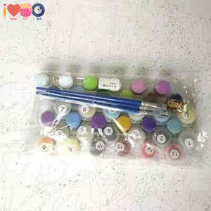 Custom Paint By Numbers Kit