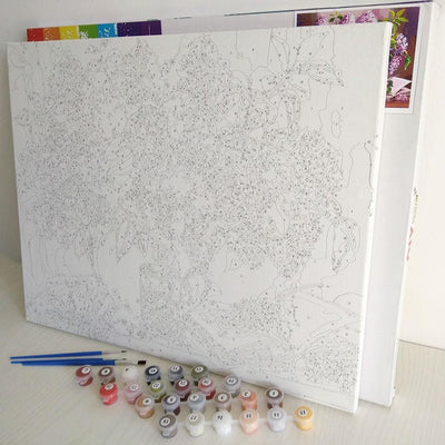 Lost Princess Color by Numbers Kit