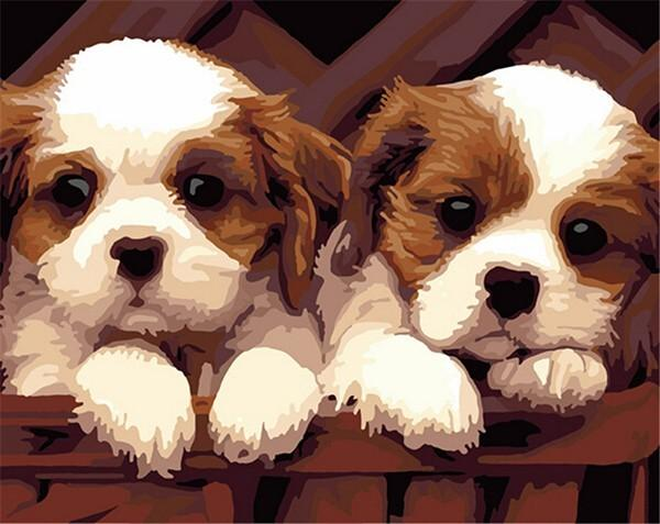 Couple of Cute Puppies - Paint by Numbers
