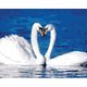 Swan Couple Forming Heart Paint by numbers - Beautiful Gift