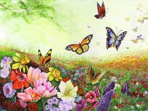 butterflies paint by numbers