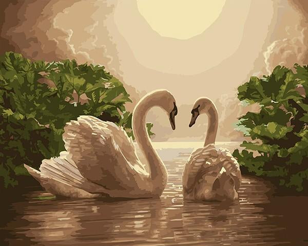swan paint by numbers