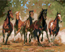 Load image into Gallery viewer, Horses Paint by Number for Adults