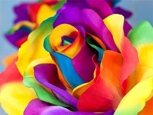Multi-color Rose - Paint with Diamonds