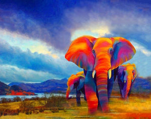 Colorful African Elephant DIY with Paint by Numbers Kit