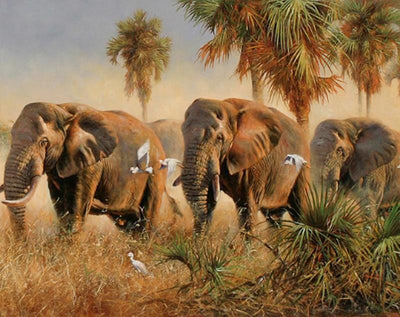 DIY Elephants Oil Painting - Paint by Numbers for Adults