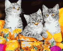 Load image into Gallery viewer, Three Kittens - PBN