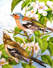 Load image into Gallery viewer, birds diamond painting